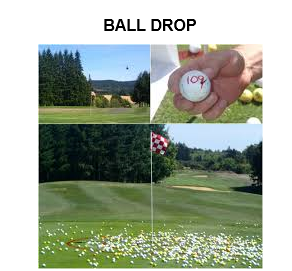 ball-drop